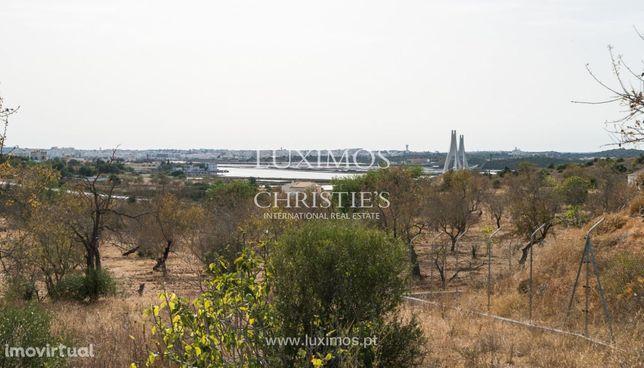 Quinta com moradia V3+2, piscina e jardim, para venda, Lagoa, Algarve
