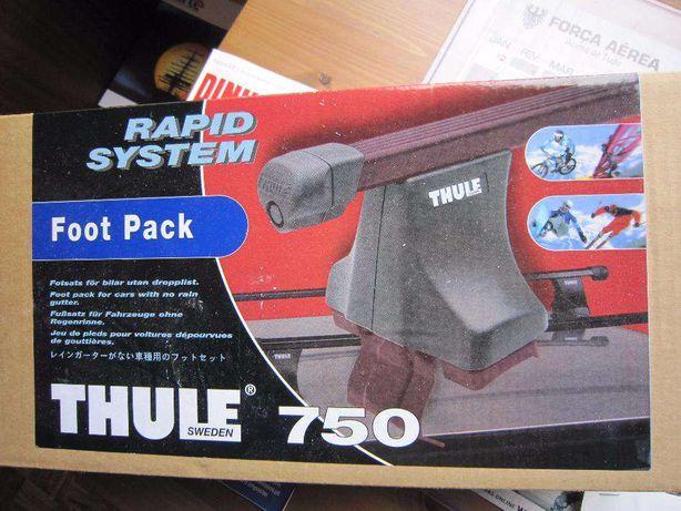 Thule 750