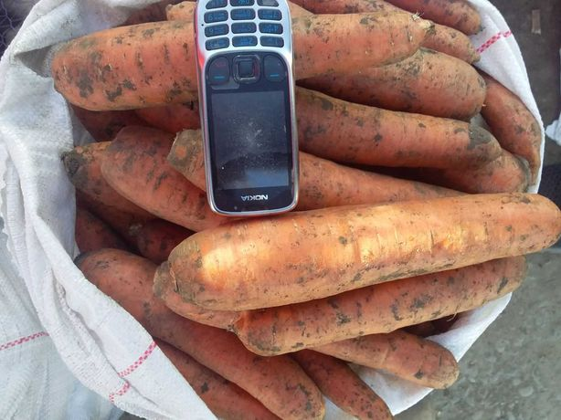 Морква з холодильника