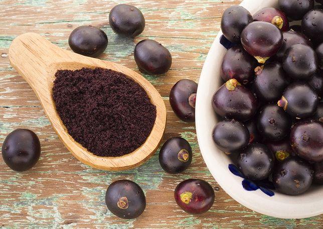 Açaí biológico brasileiro fruta ou liofilizado para venda