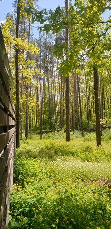 Продам Участок 12 соток в Лесной Части Коттеджного Городка Стоянка