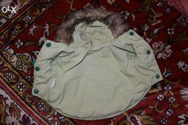 Костюм для собаки мелкой породы ( костюм для йорка )