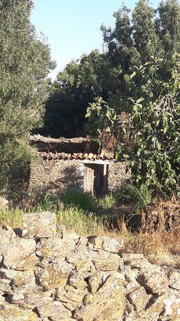 Antigo moinho no Lagar de Água Penha Garcia