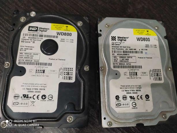 Dysk HDD  WD  800  80 GB