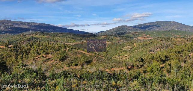 Magnifica Propriedade c/ruína Monchique GS17414GC