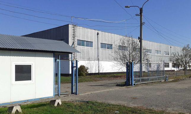 Аренда Цех Склад Офисы Производственно-Складские помещения Мукачево
