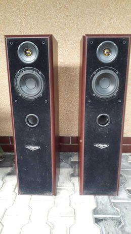 Tonsil Maestro 80