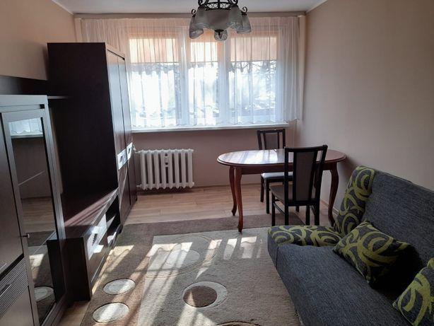Wrocław Chorwacka_piekny i duży pokój do wynajęcia od zaraz