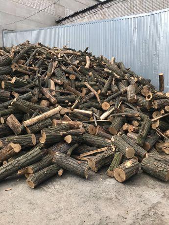 Продам дрова твёрдых пород