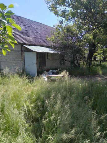 продам дом с пасекой