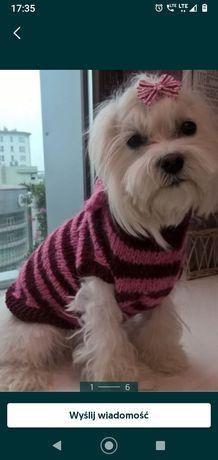 Sweterek dla suni nowy robiony własno ręcznie