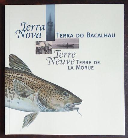 terra nova terra do bacalhau