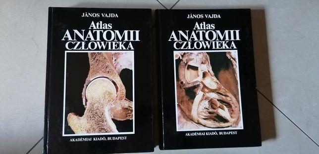 Atlas anatomii człowieka 2 szt