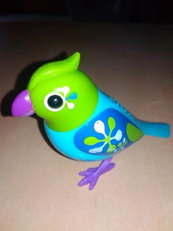 Śpiewający ptaszek, interaktywny.