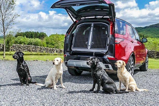 Перевозка животных , transportation of animals.