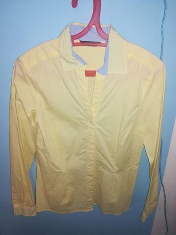 Koszula damska żółta S jak NOWA