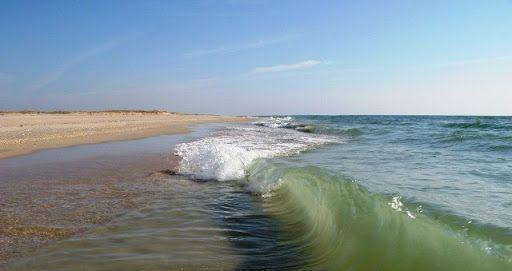 Продам участок на берегу моря 30 соток.