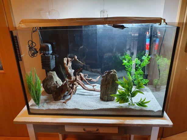 Akwarium z wyposażeniem  150L