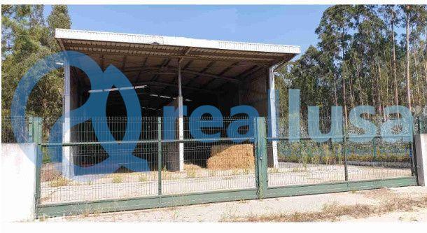 Armazém para fins agrícolas situado em Válega, Ovar, Aveiro, Excelente