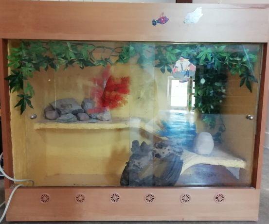 Akwarium terarium suche dla jaszczurki