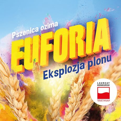 Pszenica Euforia c1+ nawóz donasienny. Ostatnie ilości!!!