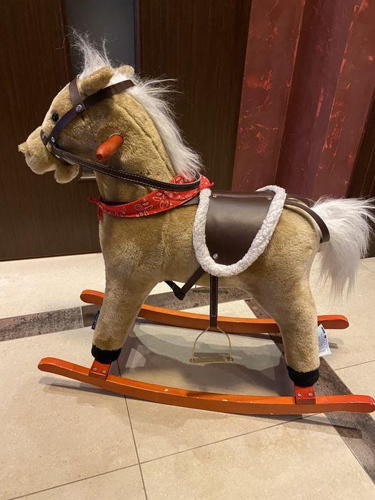 Koń na biegunach kucyk Białystok - image 1