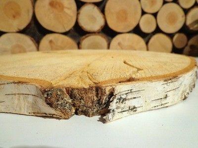Okazja duże plastry drewna brzoza 24-30 Szlifowane