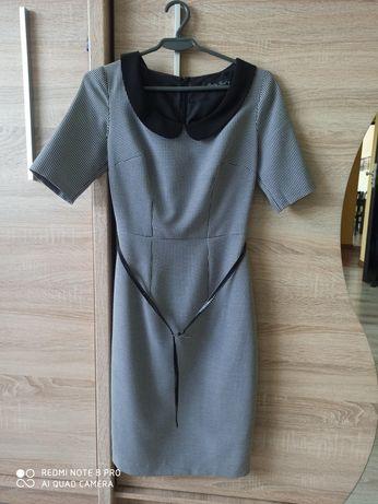 Sukienka z kołnierzykiem Pretty Girl XS 34