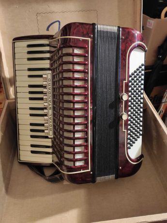 Akordeon Royal Standard, 96 basów