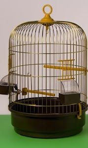 Klatka złota dla ptaka egzotycznego kanarka papugi
