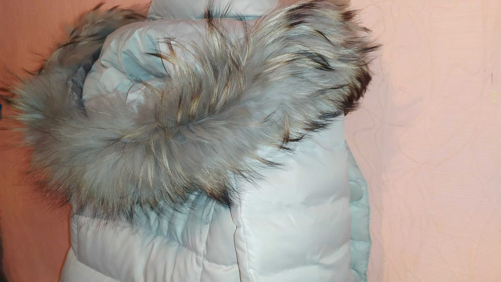 Длинный светлый воротник 1м из меха енота на куртку на парку Днепр - изображение 1