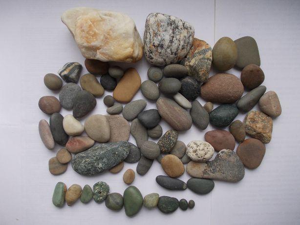 Морской камень. Камни декор для аквариума