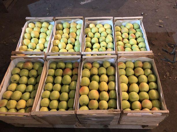 Яблука різних сортів з холодильника (фрешовані)
