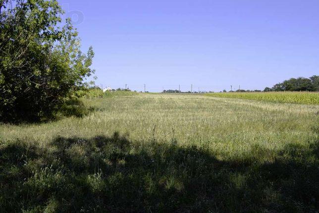 Продам (или обменяю на автомобиль) два земельных участка