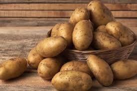 Картопля велика