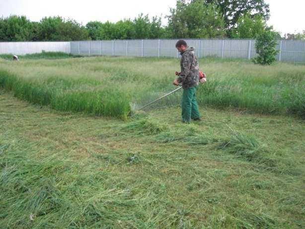 Услуги садовника и озеленителя покос травы