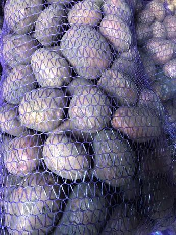Продам смачну ,якісну картоплю ! Можлива доставка