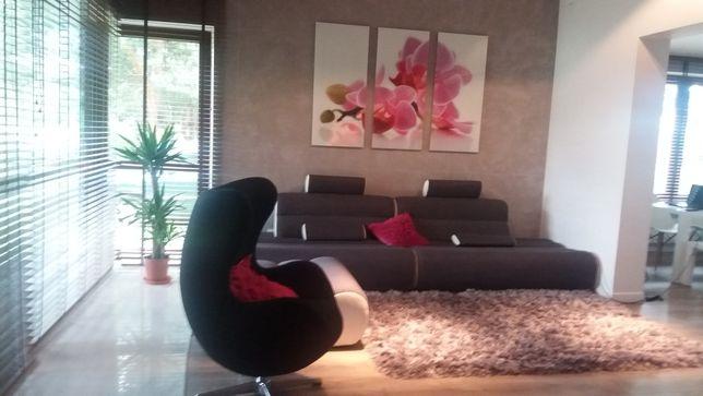 Obraz w 3 czesciach rozowa orchidea