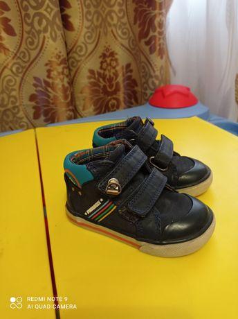 Ботинки обувь демисезонная для мальчика р. 20 кожаные Pablosky