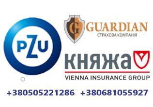 Виза Работа Страховка Анкета Приглашение  подача Новой Почтой
