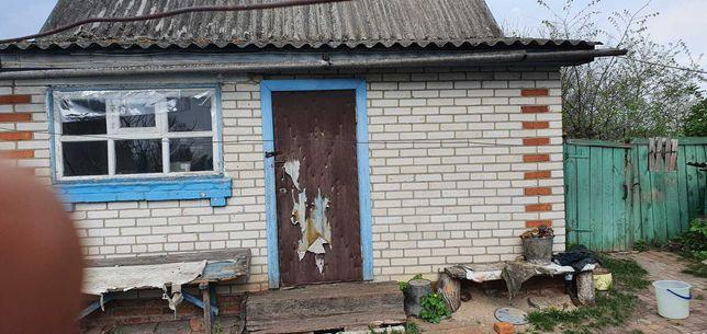 Продам дом в с.Ворожба (Лебединський р-н)