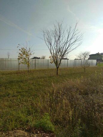 Продається земельна ділянка під садівництво! С. Кам'яногірськ.