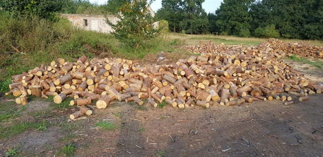 Drewno Opałowe sosnowe