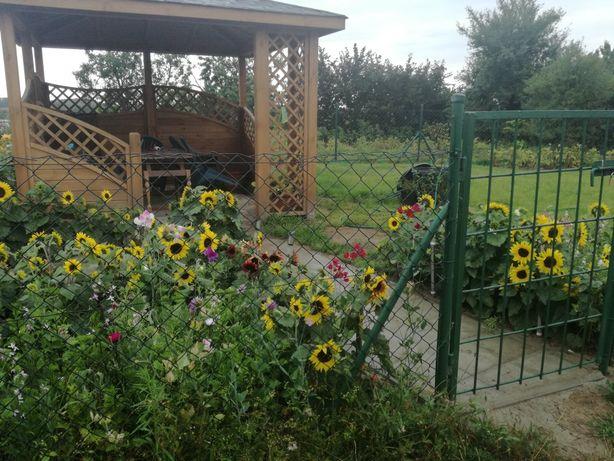 Dzialka ogrodowa w Bytowie