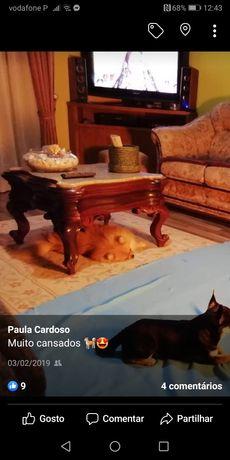 Mesa de centro com tampo em mármore