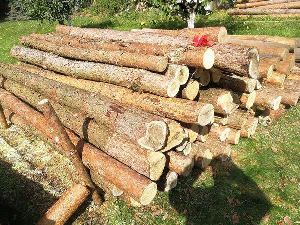 Drewno drzewo opałowe kominkowe sosna