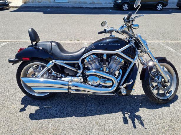 VROD Harley Davidson (VRSCA) - 2006