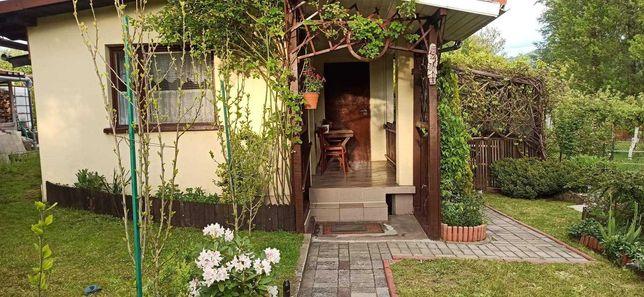 Ogródek działkowy 460 m2 Bielsko Biała ROD Porzeczka
