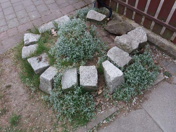 Kamień brukowy granitowy