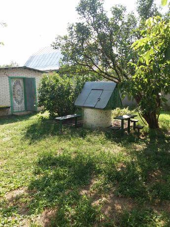 Участок с домом и  готовыми постройками (Мокрец, станция Заворичи)